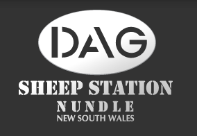 DAG Sheep Station Nundle New South Wales